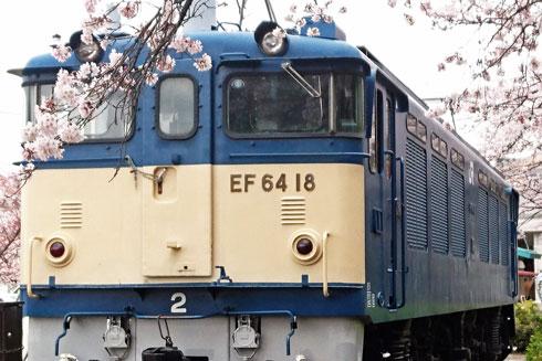 Ef64tosakura